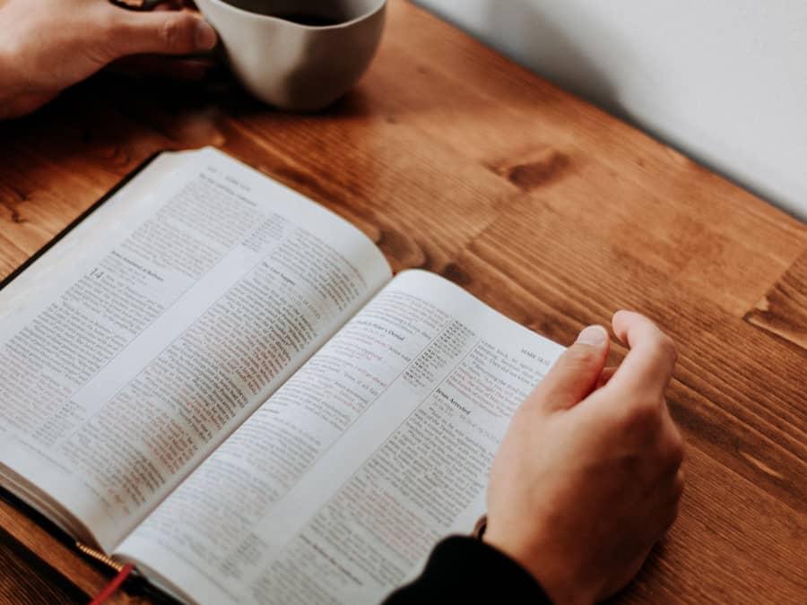 Workshop: Bibeln är din vän